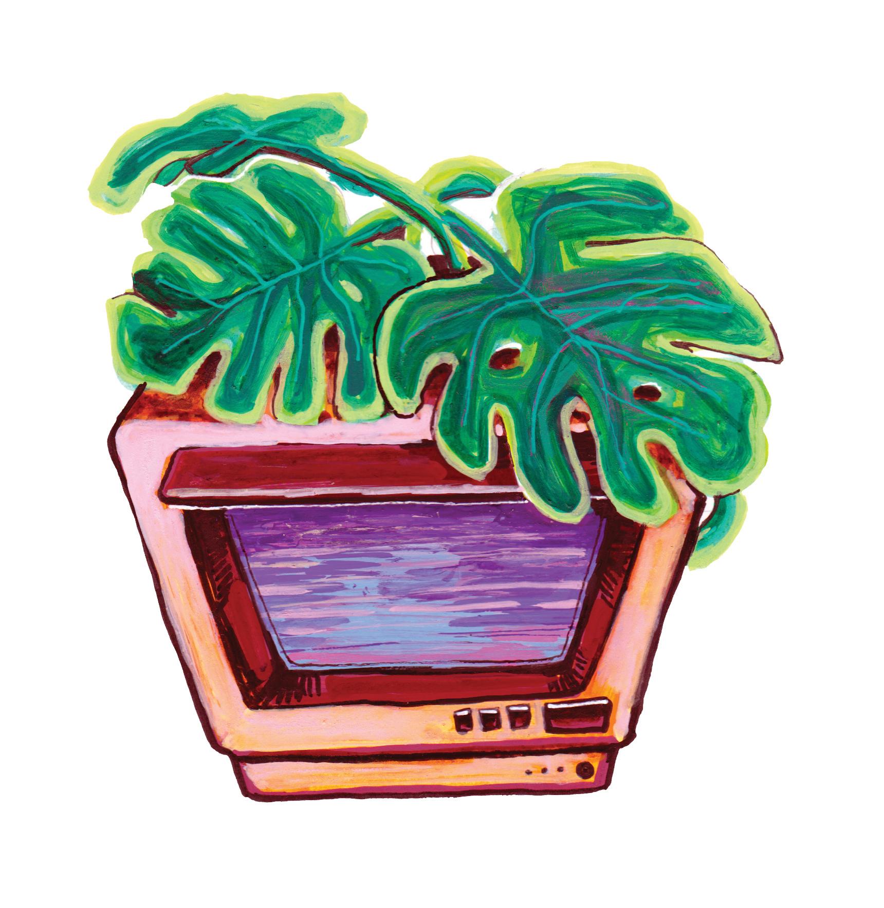 TV, leaf, illustration